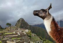Hiram Bingham Mach Picchu