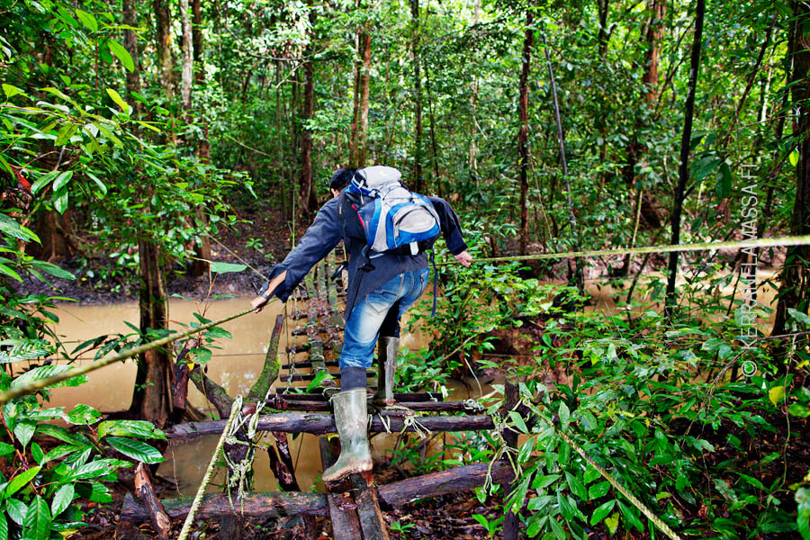 Malesia_Borneo_luonto_14