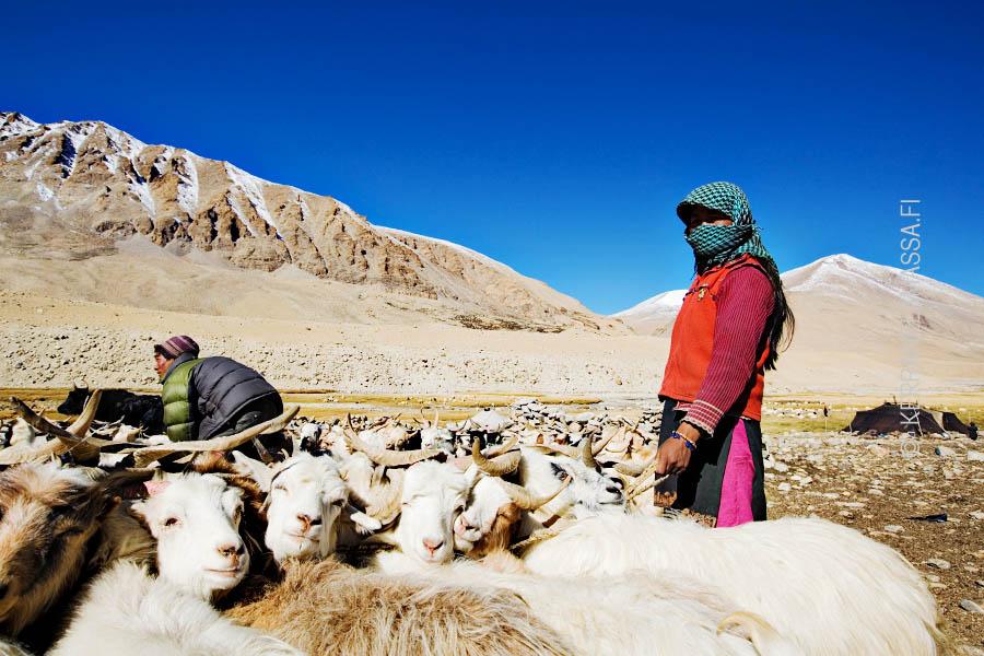Ladakh Intia
