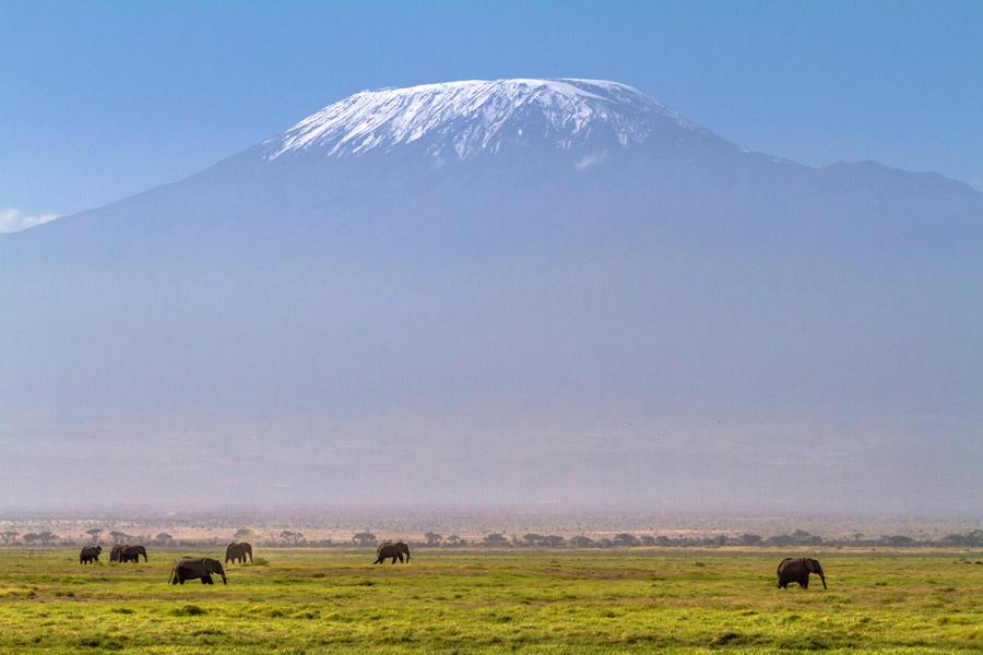 Kilimanjaro vuori