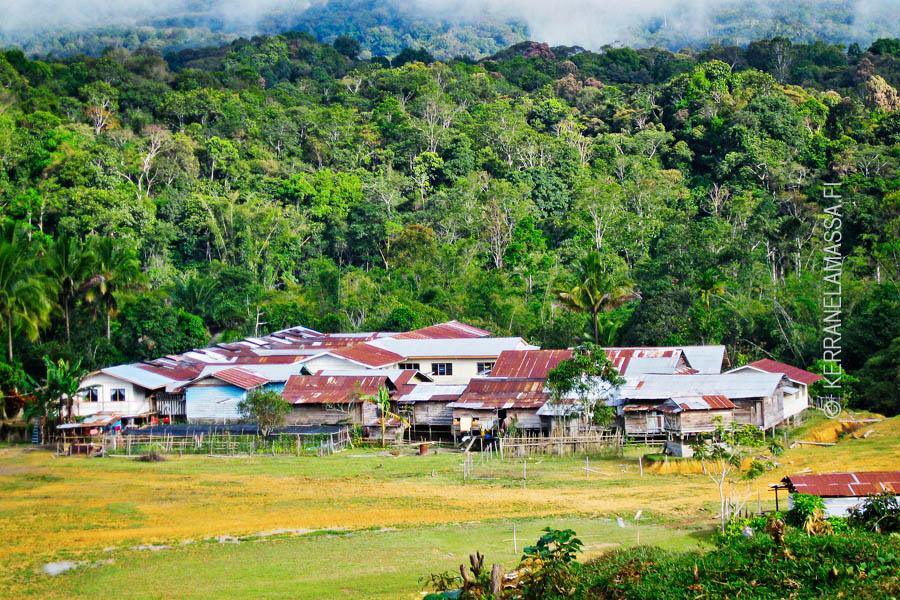 Borneo_Malesia_Palonen_08