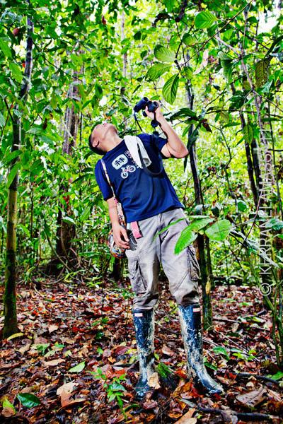 Borneo_Malesia_Palonen_16