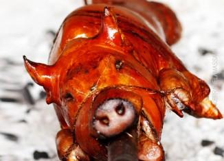 Filippiinit-ruoka-lechon
