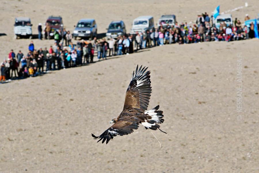 Mongolia_Palonen_10