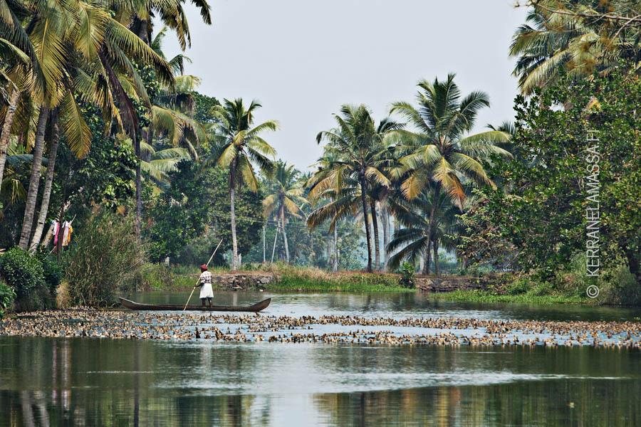 Kerala_Intia_05