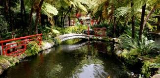 monte-palace-garden