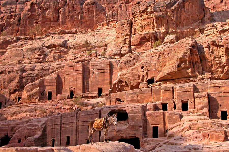 Laakson seinät ovat täynnä hautaluolia. Kuva Dennis Jarvis, Flickr CC