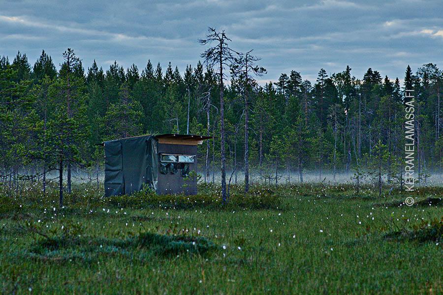 Kuhmo, Kainuu, Finland