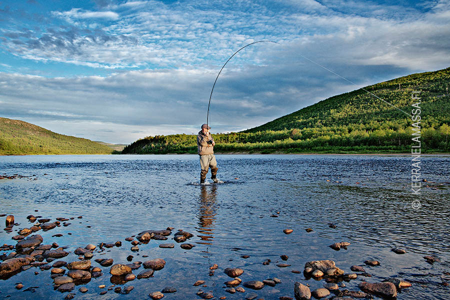 tenojoki kalastus