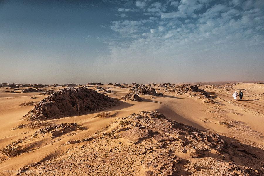 Saharan hiekkadyyneillä.