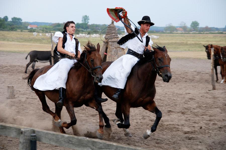 unkari-pusta-ratsastajat