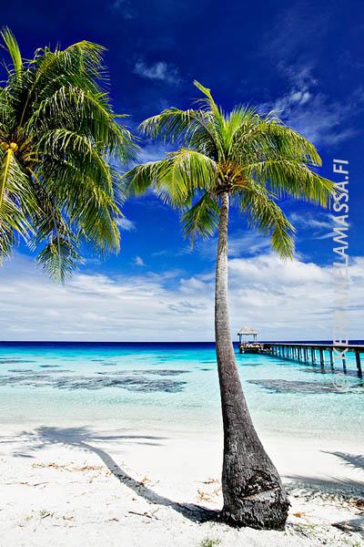 Ranskan_Polynesia_06