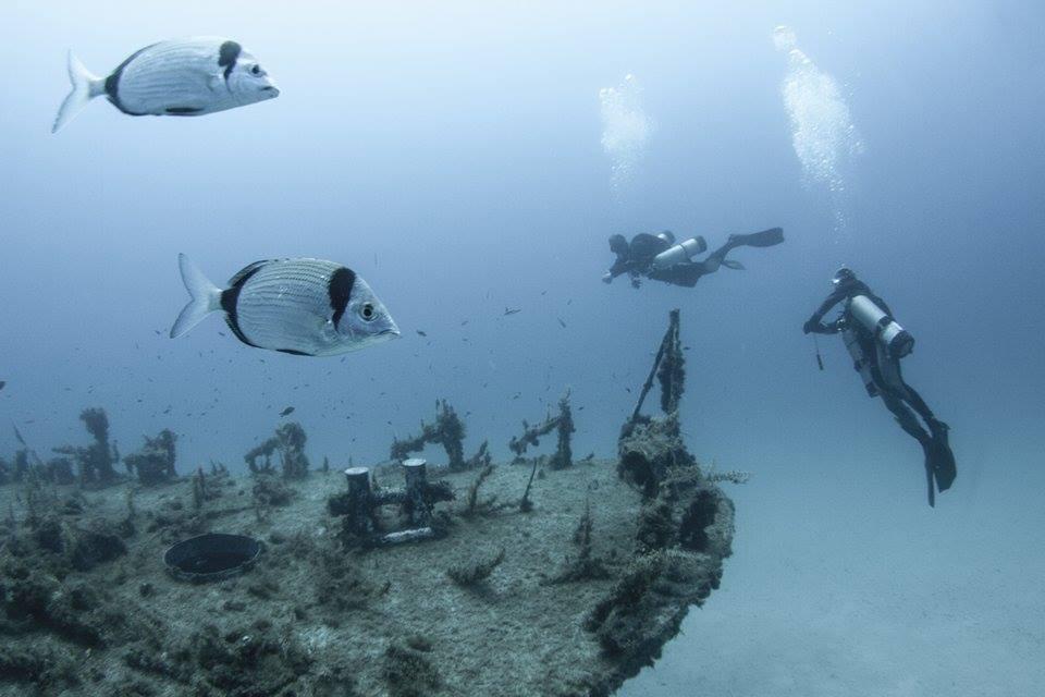 malta-sukellus-6