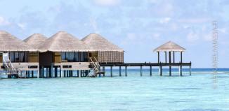 malediivit-bungalowi-veden-paalla