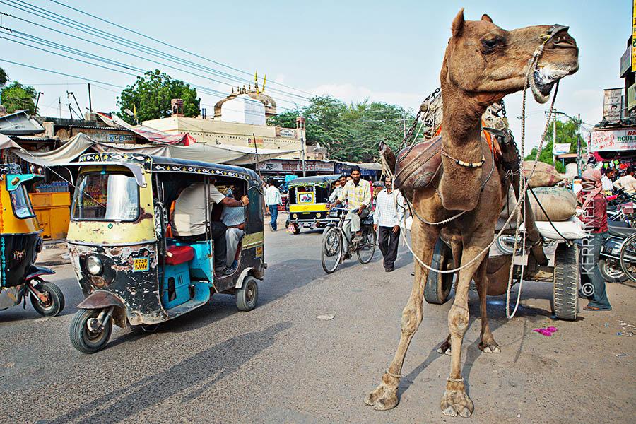 Koukku baarit Mumbai