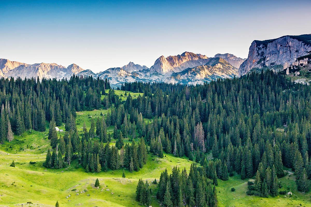Montenegro Durmitor kansallispuisto