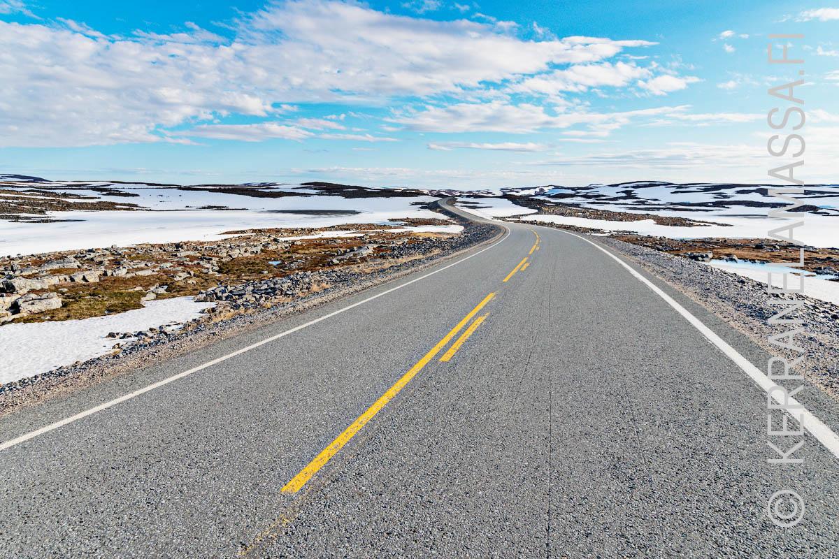 pohjois-norja maantie kesällä