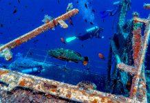 Kypros sukellus Zenobia hylky