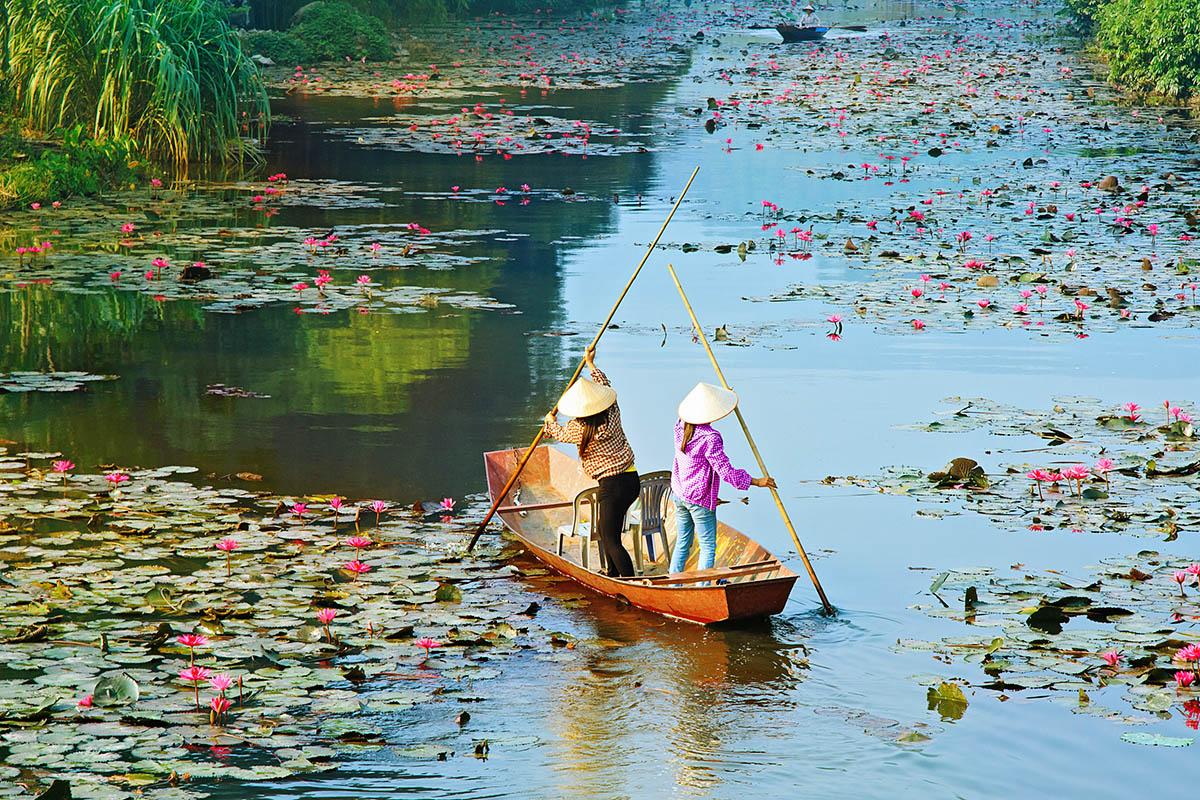 Vietnam vene