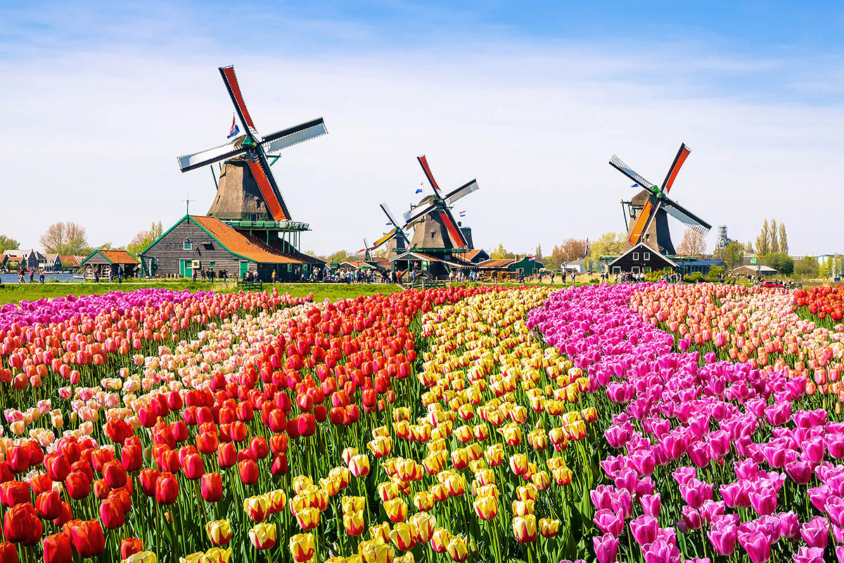 Alankomaat Parhaat Matkakohteet Kerran Elamassa