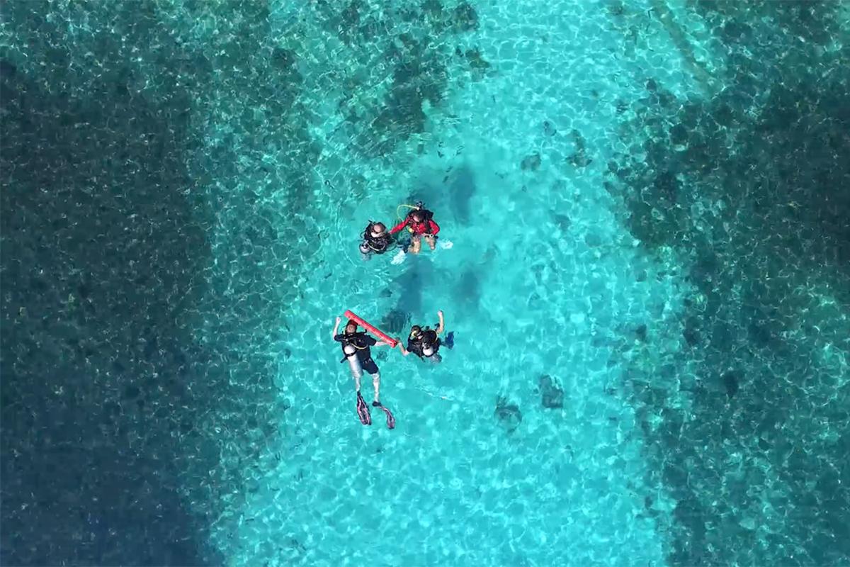 Koh Tao sukelluskurssi