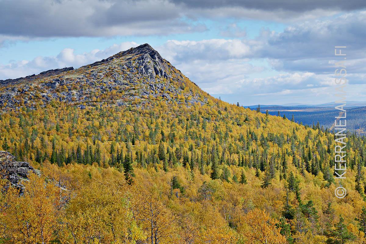 Urho Kekkosen Kansallispuisto Suomen Paras Vaelluskohde