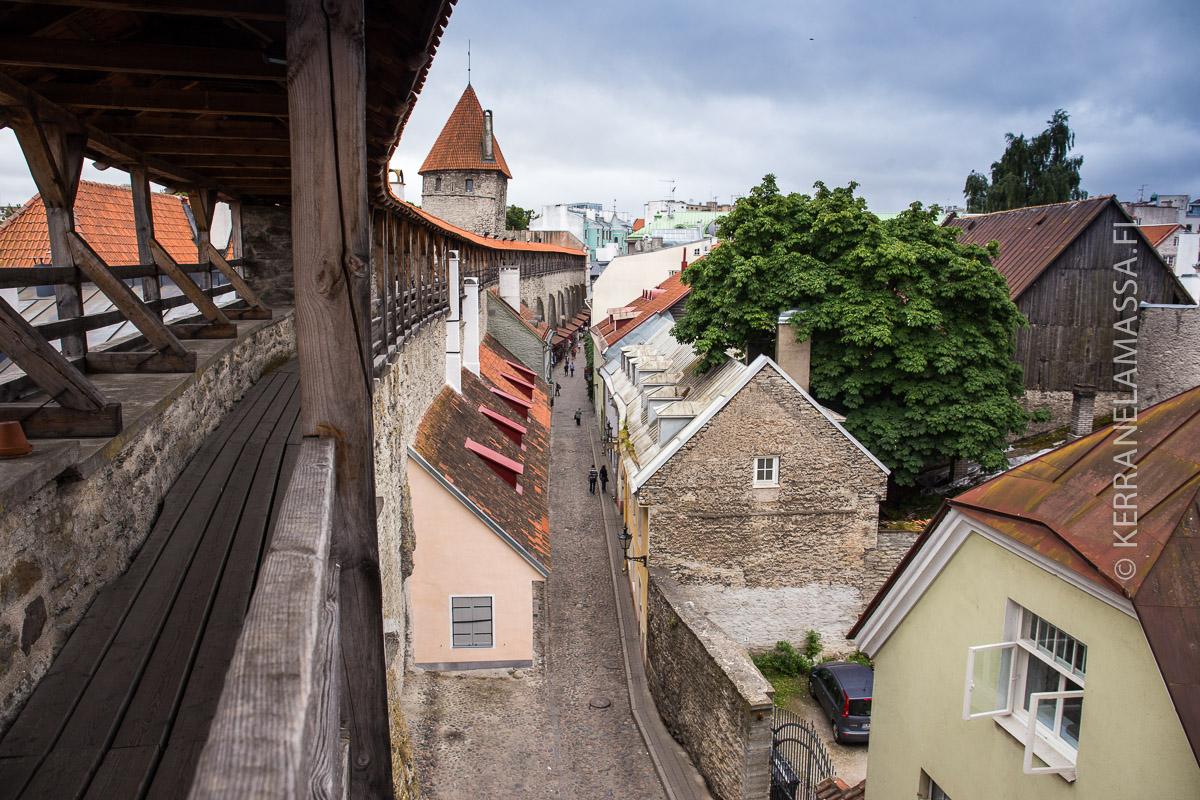 Tallinna muurit