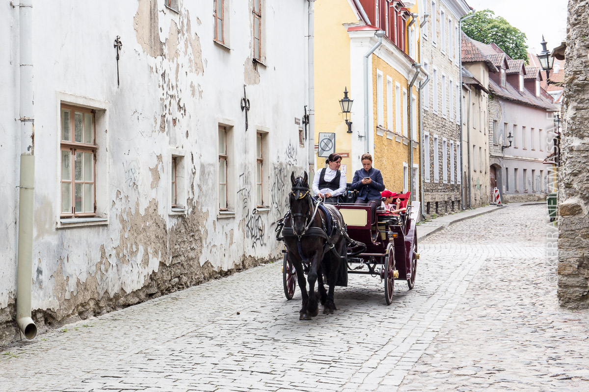Tallinna katu