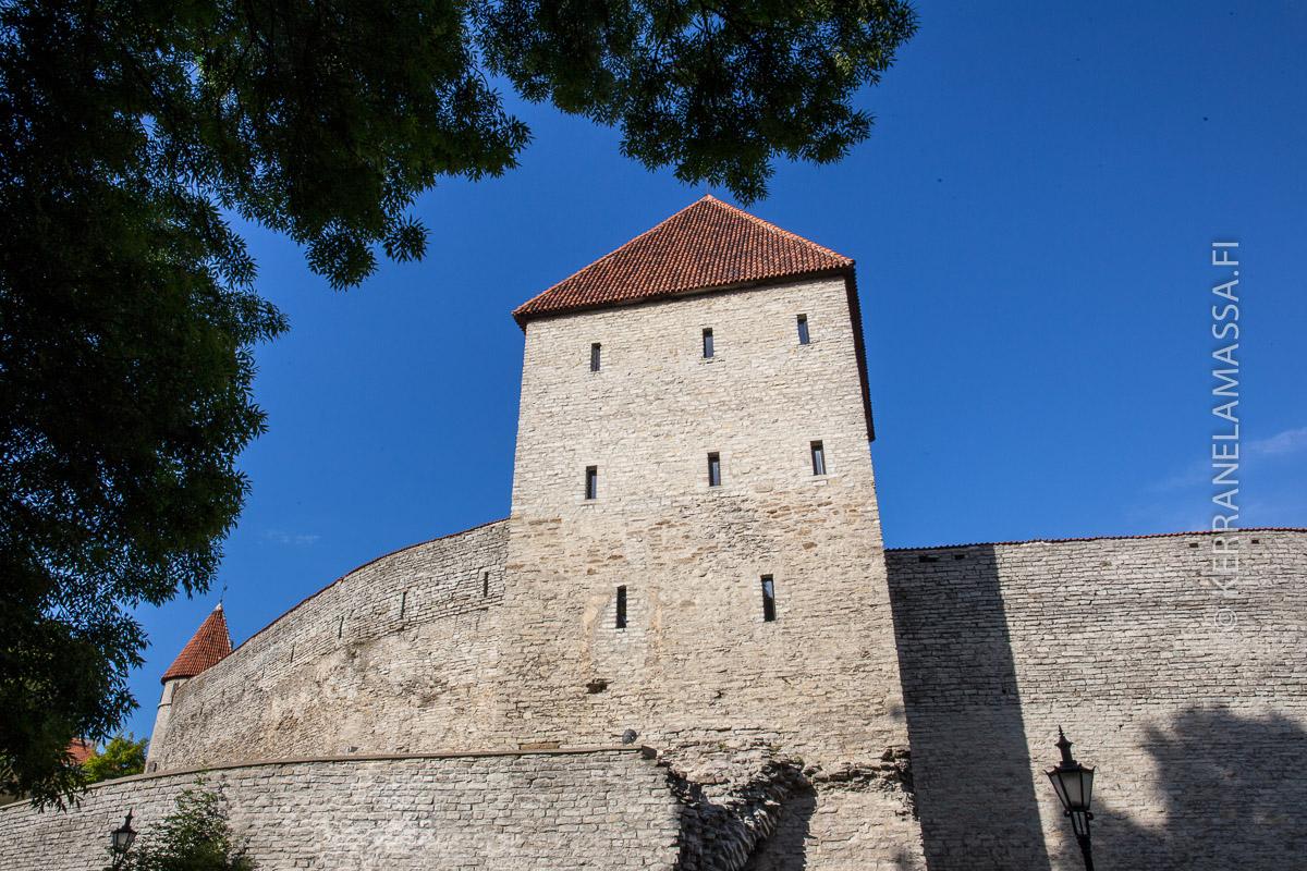 Toompean linna Tallinnna