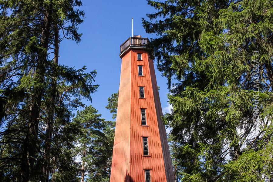 Tammelanharjun näkötorni