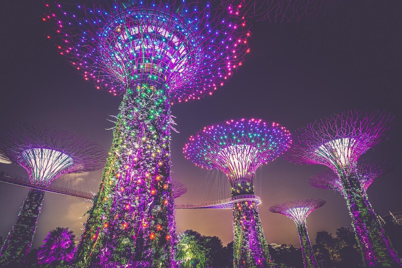singapore-supertree-grove