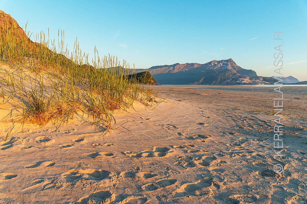Norja saltstraumen hiekkaranta