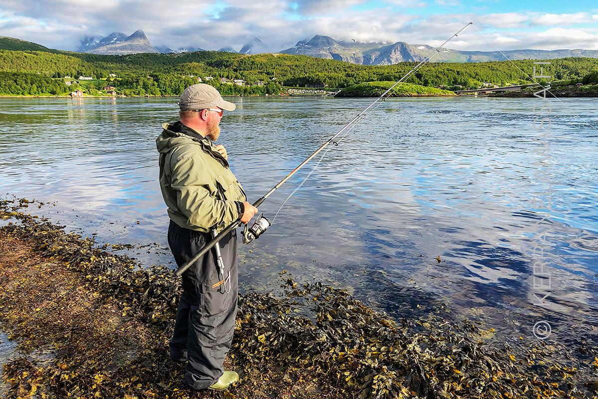 Norja saltstraumen kalastus rannalta