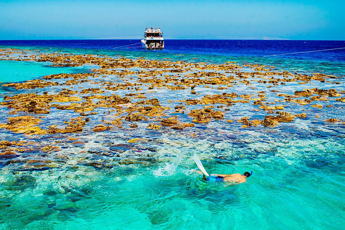 egypti punainenmeri snorklaus