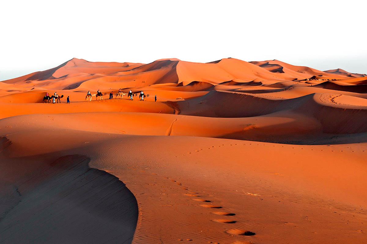 hiekkadyyni sahara egypti