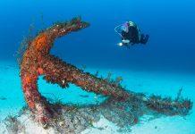 malta sukellus ankkuri