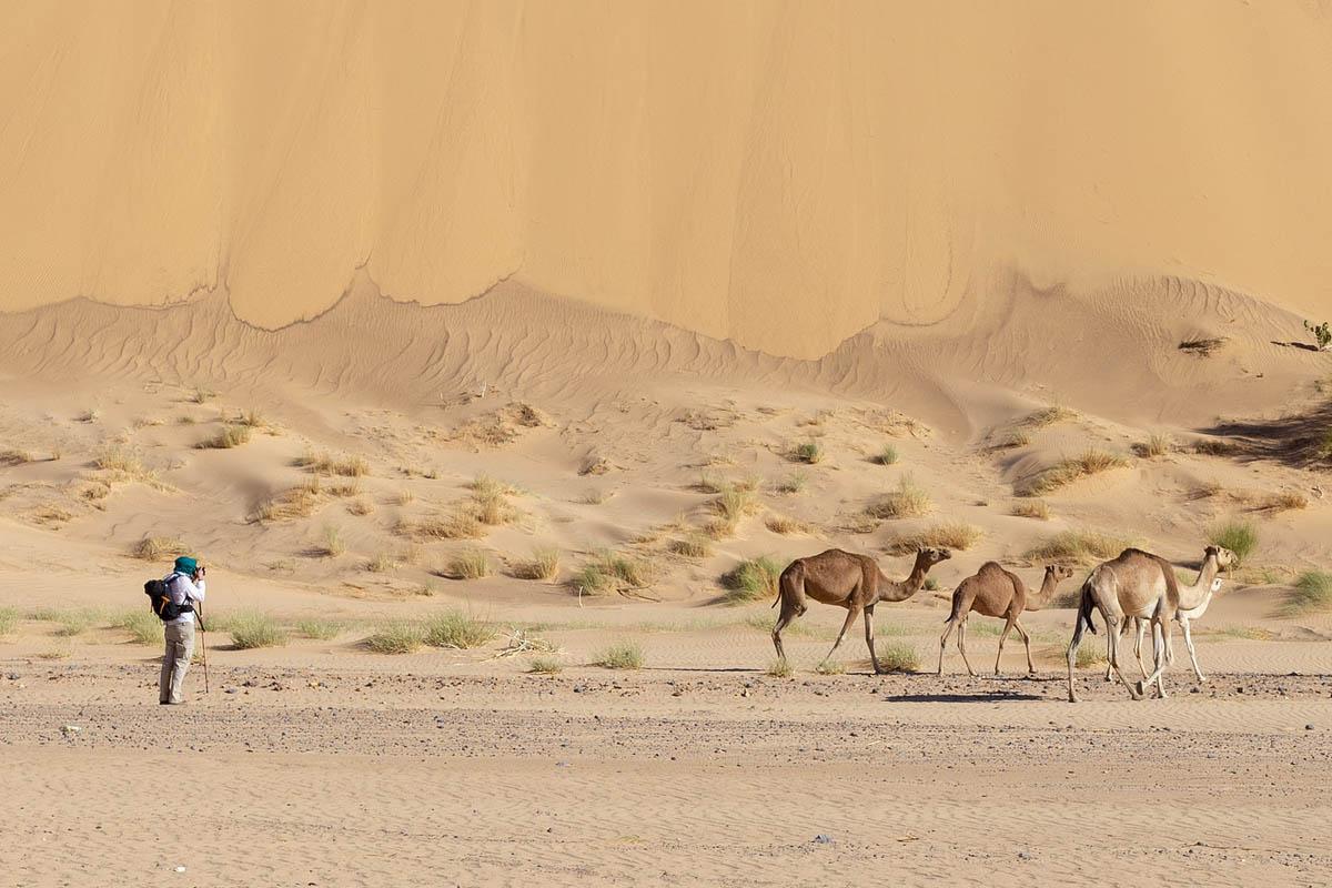 Mauritania Sahara