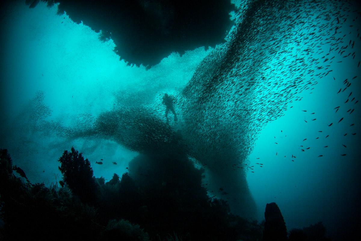 Raja Ampat sukellus