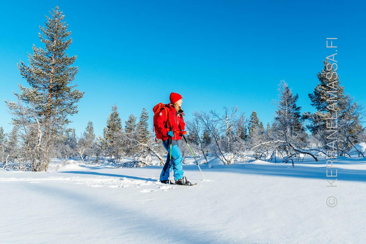 Nähtävyydet ja käyntikohteet - Pohjois-Suomi