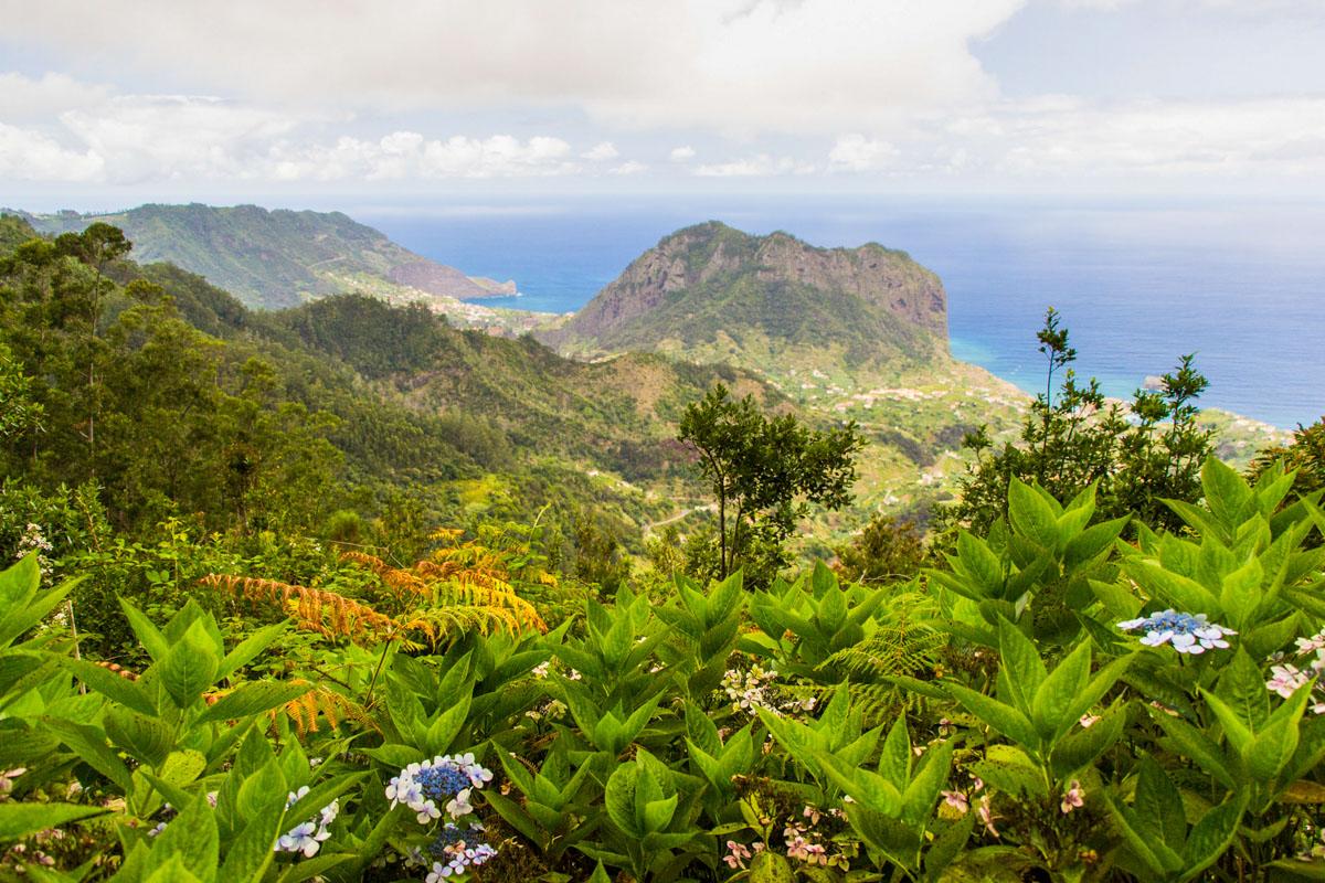 Kotkakallio Madeira