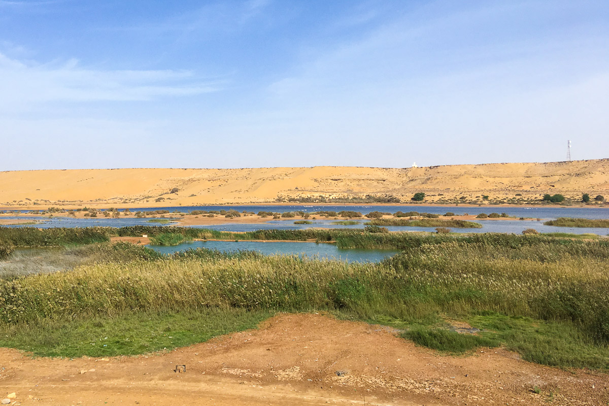 Länsi-Sahara jokilaakso