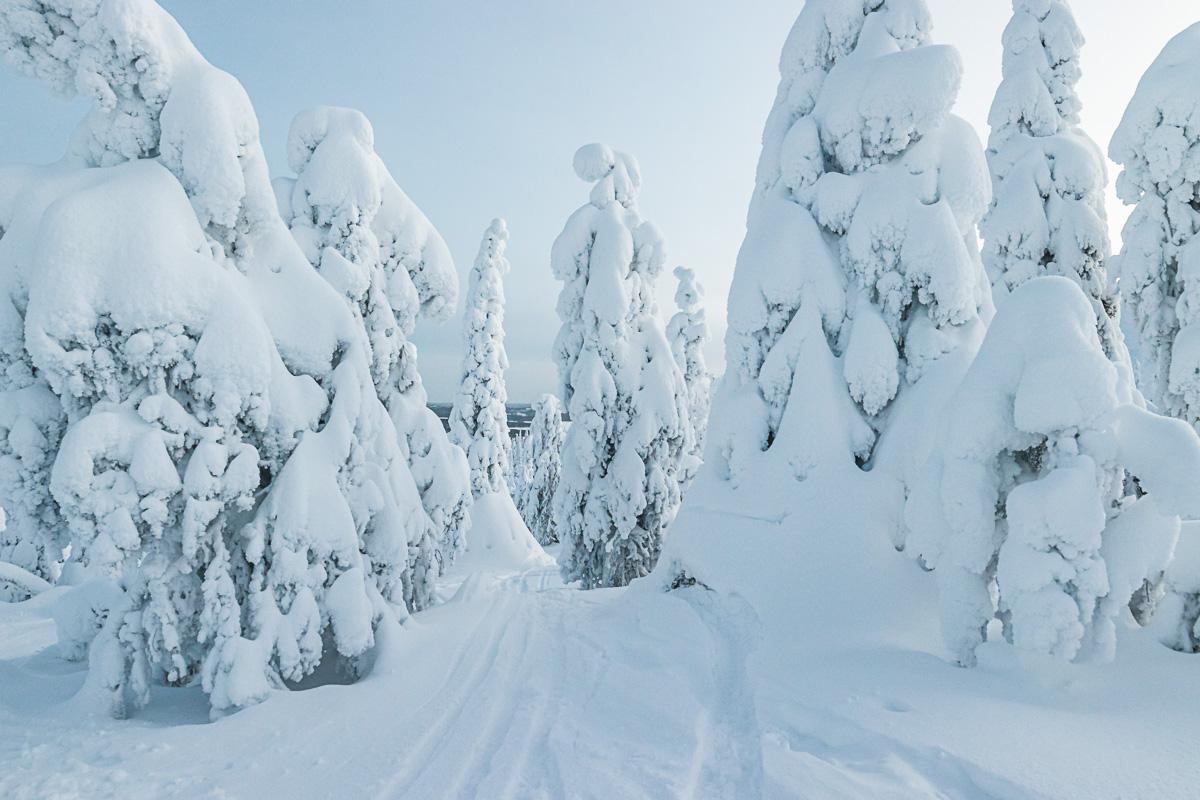 Tykkylumi Suomi