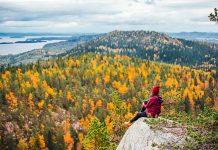 Koli syksyllä