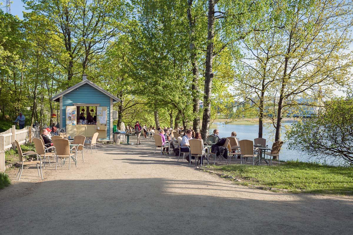 Linnunlaulu Töölönlahti Helsinki