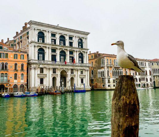 Venetsia joulukuu
